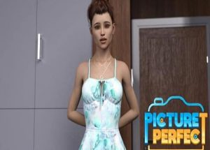 Picture Perfect PC Game Free Download
